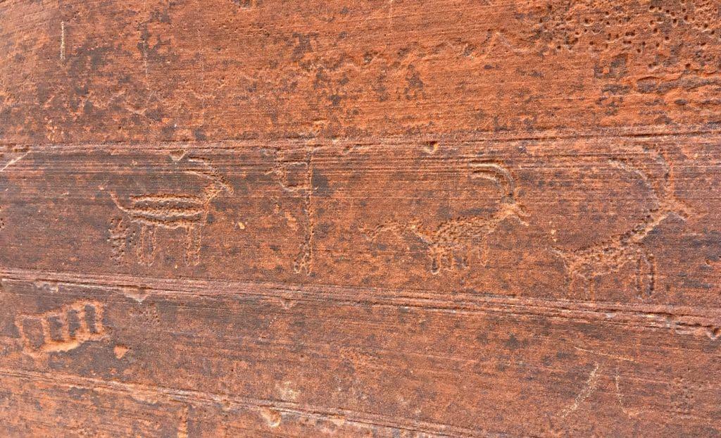 Buckskin-Gulch-Petroglyphs