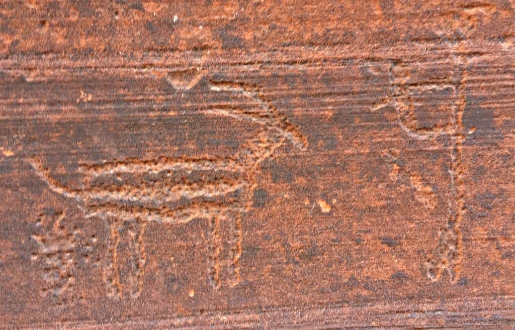 North Coyote Buttes Petroglyphs