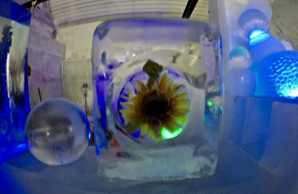 Flower in ice at Aurora Ice Museum