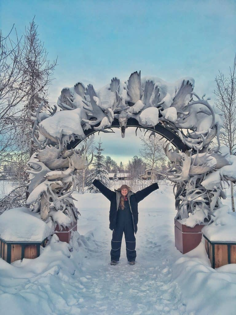 Trip to Fairbanks, Alaska - moose antlers