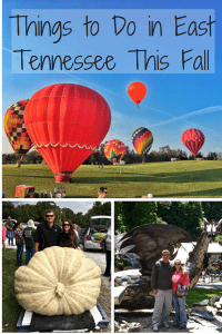 Things to do in East TN in fall