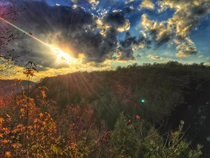 Foster Falls in Fall